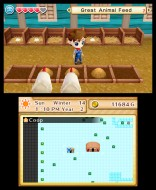 3DS_HarvestMoonTheLostValley_28_enGB