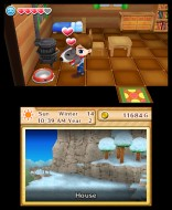 3DS_HarvestMoonTheLostValley_31_enGB