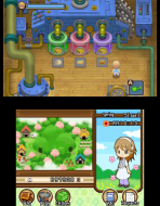 3DS_HarvestMoonTheTaleOfTwoTowns_02