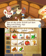 3DS_HometownStory_06_deDE