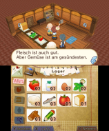 3DS_HometownStory_08_deDE