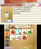 3DS_HometownStory_03_frFR