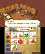 3DS_HometownStory_05_frFR