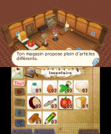 3DS_HometownStory_08_frFR