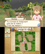 3DS_HometownStory_10_frFR