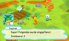 3DS_PokemonMysteryDungeonGTI_deDE_33
