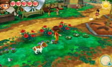 3DS_StoryOfSeasonsTrioOfTowns_07