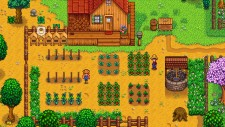 NSwitchDS_StardewValley_01