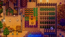 NSwitchDS_StardewValley_02