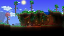 NSwitchDS_Terraria_04