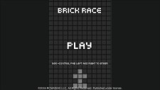 WiiUDS_BrickRace_01