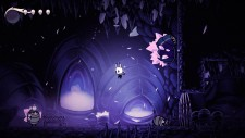 WiiUDS_HollowKnight_09