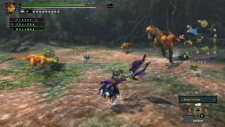 WiiU_MonsterHunter3Ultimate_18