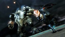 WiiU_NinjaGaiden3RazorsEdge_58_Screenshot_enGB