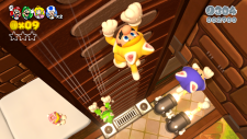 WiiU_SuperMario3DWorld_03