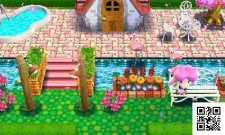 3ds_animalcrossinghappyhomedesigner_ugc_itit_57