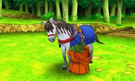 CI7_3DS_DragonQuest8JourneyOfTheCursedKing_17.jpg