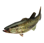 NSwitch_51WorldwideGames_Icons_Fishing.png