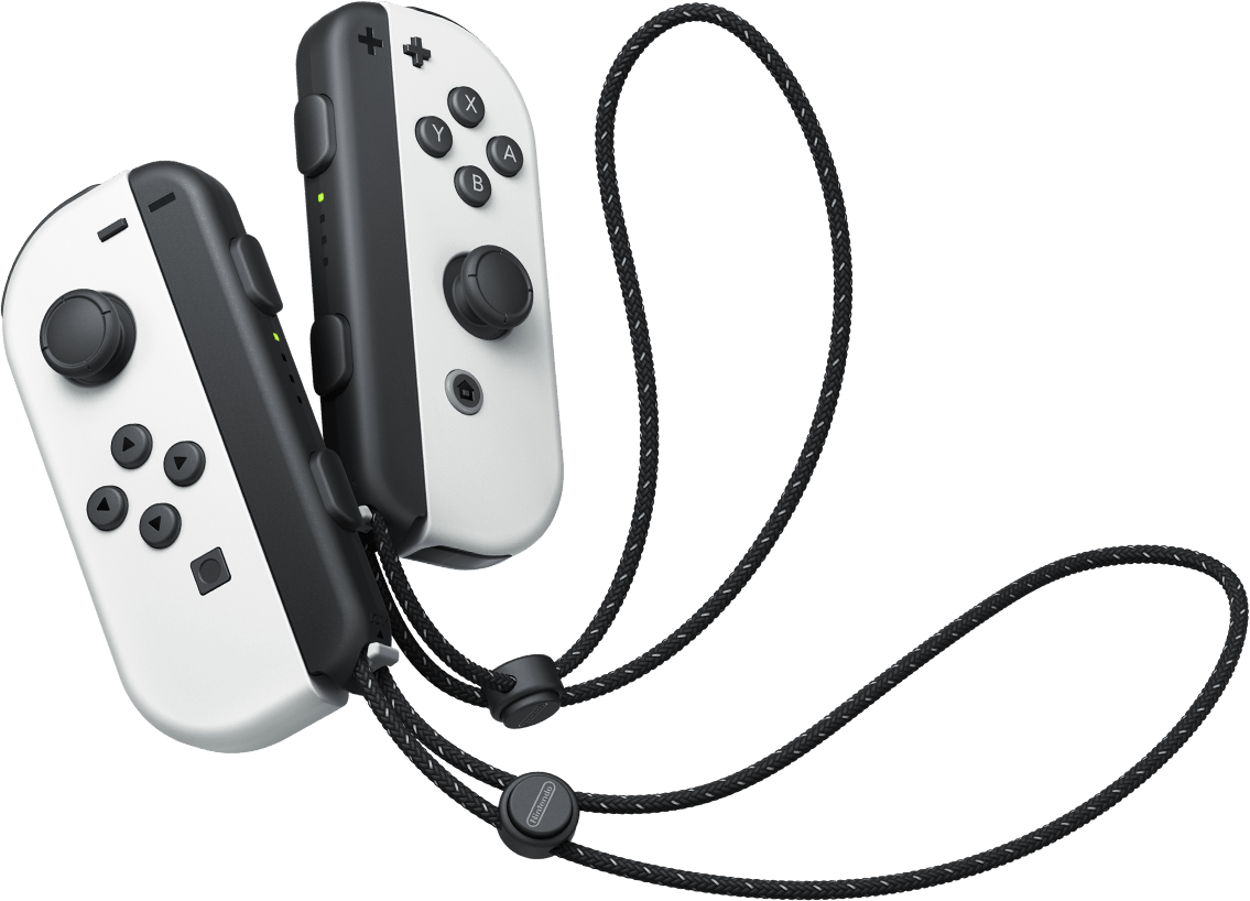 CI_NSwitch_controllers_joy_con.png