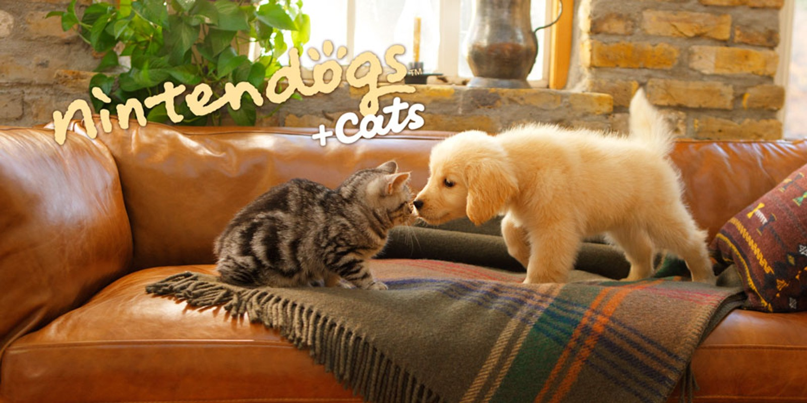 nintendogs + cats: Golden Retriever y nuevos amigos