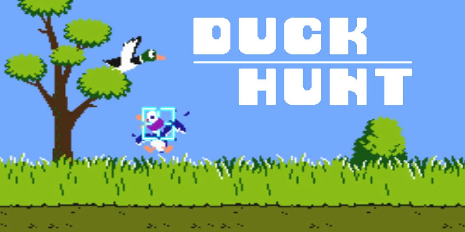 Duck Hunt | NES | Games | Nintendo