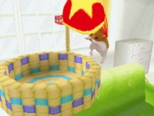 Video: Petz® Hamster Superstar