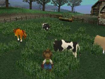 Harvest Moon A Wonderful Life Nintendo Gamecube Games Nintendo