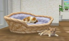 3DS_nintendogs_03scrn03_U_Ev