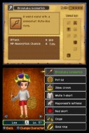 EN_Dragon_Quest_IX_Customisation_Female_3