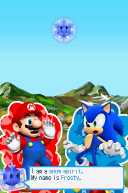 Mario and sonic at the olympic winter games ds