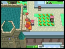 pokemon platino per pc