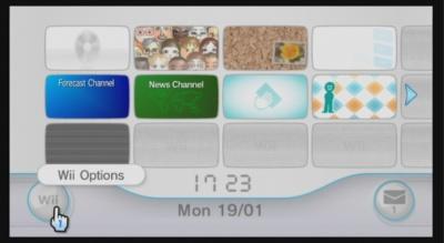 Wii operations manual parental controls
